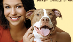 Free Rachel Ray Nutrish Pet Food Sample