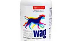 Free Wag Lifetime Joint Care Trial