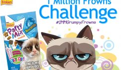 Friskies' 1 Million Frowns Challenge Sweepstakes