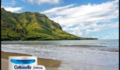 Cottonelle's Traveling Bum Personality Sweepstakes