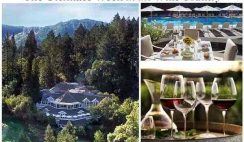 Williams-Sonoma's Ultimate Week in the Wine Country Sweepstakes