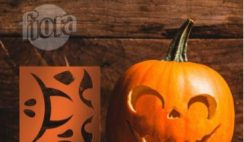 Free Pumpkin Carving Kit from Fiora
