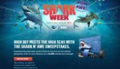 Discovery and Cox's Shark N' Awe Sweepstakes