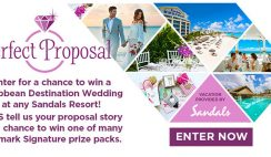 Hallmark Channel's Perfect Proposal Sweepstakes