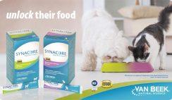 Free Synacore Probiotic Sample