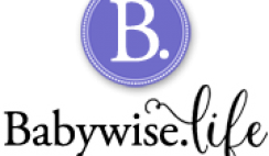Win $500 Old Navy Gift Card from Babywise.life