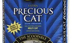 Free Precious Cat 40 lb Cat Litter from Dr. Elsey's
