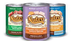 Free Nutro Wet Dog Food Sample