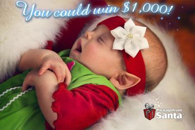 PackageFromSanta.com's Name The Baby Elf Contest