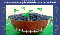 Win a $500 Visa Gift Card or 1 of 4 $250 Visa Gift Cards From Blueberries From Chile - ends 1/31 @12pm PST
