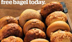 FREE Bagels Daily in January at Panera Bread