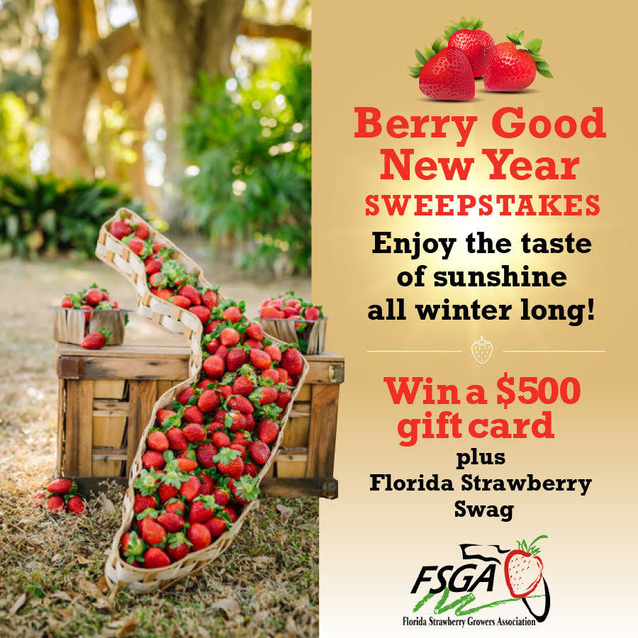Win a $500 Gift Card & Strawberry Swag - Enter Daily - ends 1/31