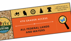 FREE National Parks 1 Year Annual Pass for Fourth Graders