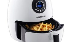 Great Deal: Get an Electric GoWise 2.75QT Air Fryer $40 ($100 Retail) 60% OFF!
