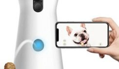 FREE Furbo Dog Camera for Healthcare Workers 2020