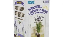 FREE lavender Planter - Roots Windowsill Lavender Planter After $10 Cash Back