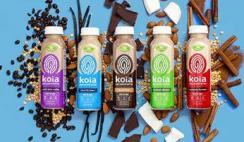 FREE Koia Protein Shakes