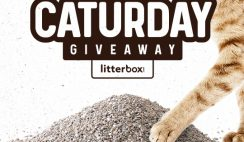 Win a LitterBox Year's Supply of FREE Cat Litter - ends 4/30