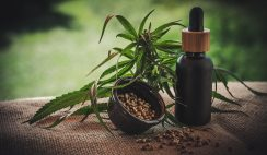 Guide to Free CBD Samples 2020