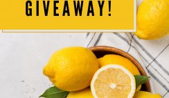 Win 1 of 3 $100 Visa Gift Cards from Lemons of Chile - ends 7/20