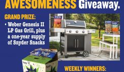 Win a Weber Gas Grill & Snyder of Berlin Snacks - ends 8/22