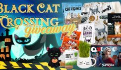 Black Cat Lovers Giveaway ends 10/31