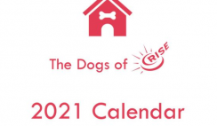 FREE 2021 Dogs of Rise Calendar