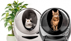 Litter Robot Sunday Funday Giveaway