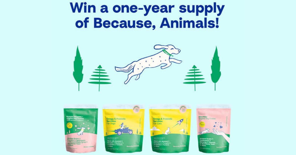 Because Animals Giveaway