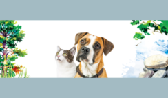 FREE Inception Dog and Cat Food Samples