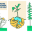FREE Tree Seedling Or Wild Flower Seed Card From Arm And Hammer