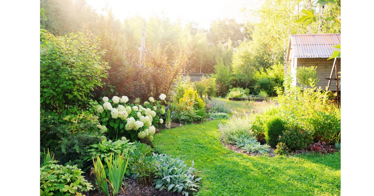 Garden Design Giveaway