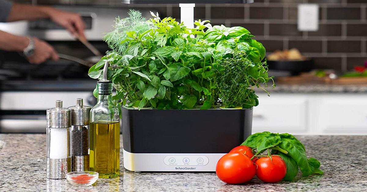 AeroGarden Indoor Herb Garden Giveaway