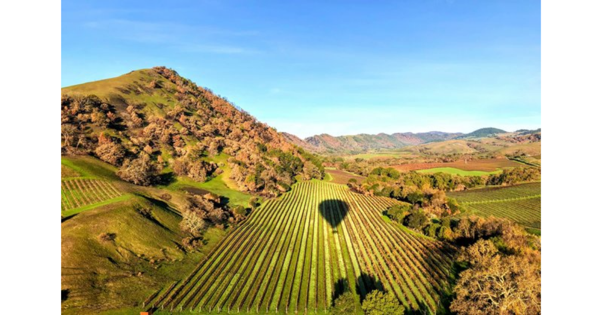 The Chandon Win a Trip to Napa Sweepstakes